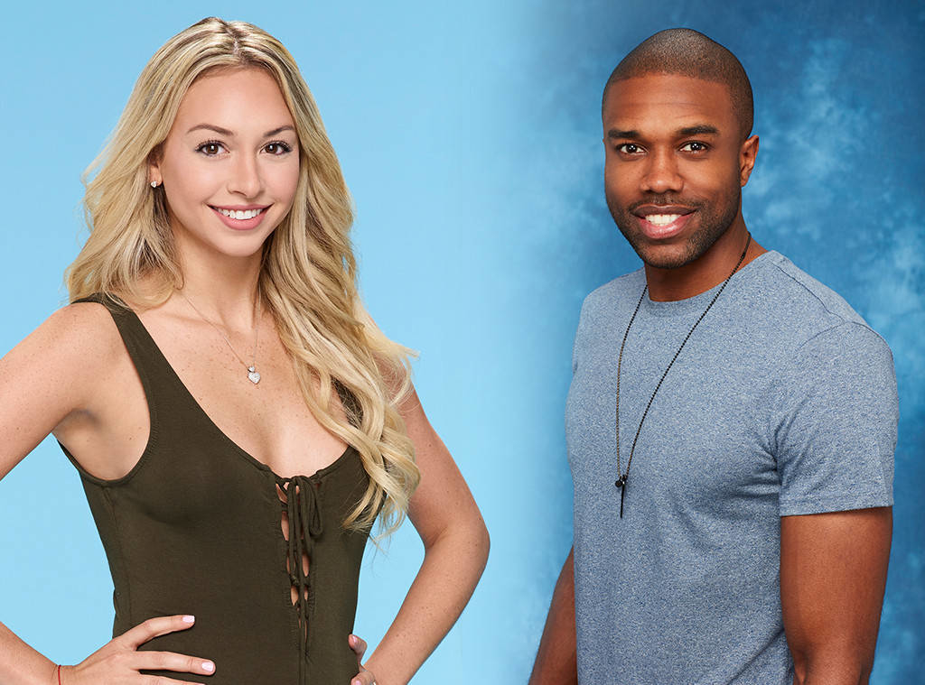 Alleged Sexual misconduct shuts down season four of Bachelor in Paradise